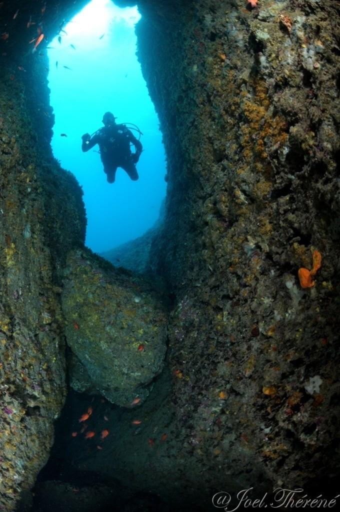 photos du 12eme concours photo sous marine de Monaco